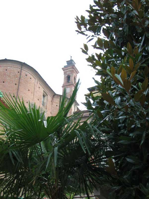 Neive église